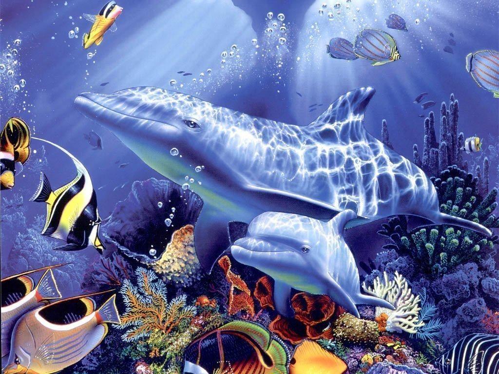 Fond d ecran dauphin for Fond ecran qui bouge pour pc