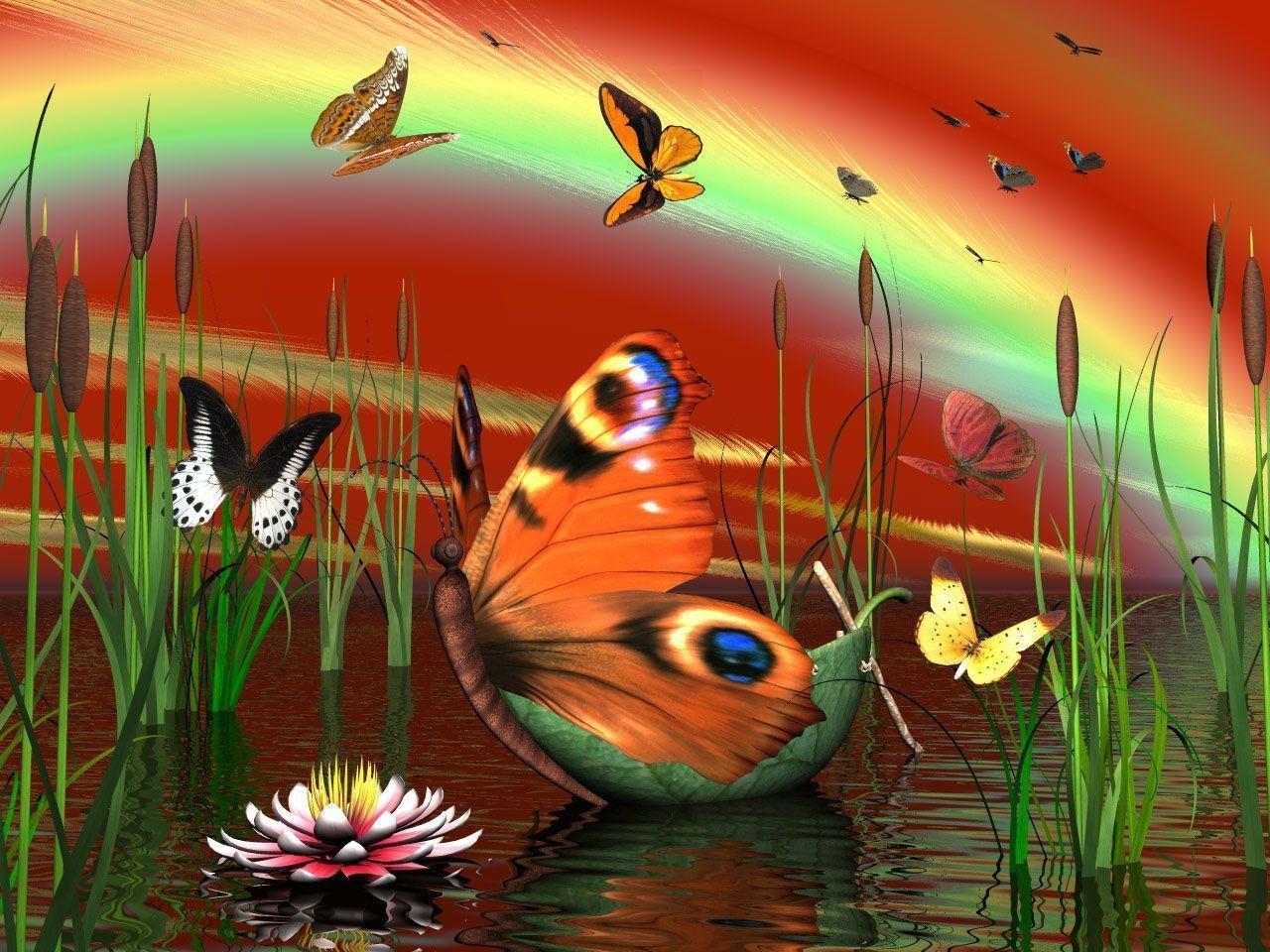 dans fond ecran papillon c36e950b